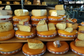 Fresh delicious cheese