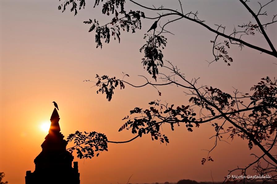 Myanmar. Bagan.