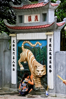 The Temple of the Jade Mountain (Ngoc Son temple ). Woman praying to the tiger.